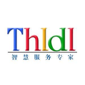 THLDL领导力