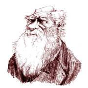 达尔文经济学