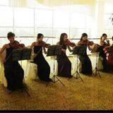 群星艺术团-木提琴