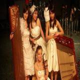 群星艺术团-民乐