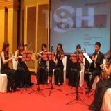新古典弦乐女子乐坊
