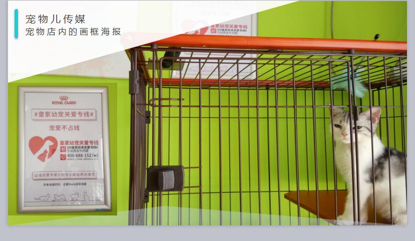 广州宠物店画框海报推广
