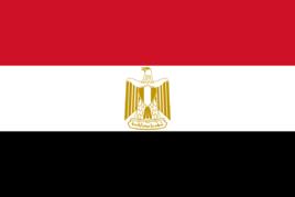 埃及媒体发稿