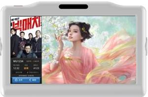 青岛流亭机场行李车电子屏竖条广告(240台)