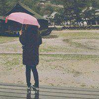 心雨的情感