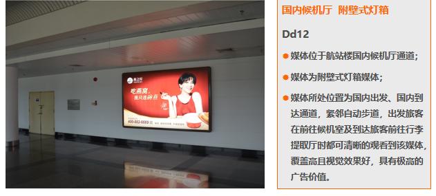 厦门机场T3国内候机厅附壁式灯箱广告(一年)Dd12