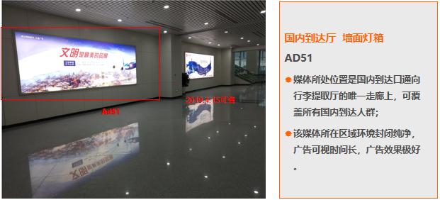 福州机场国内到达厅墙面灯箱广告(一年)AD51