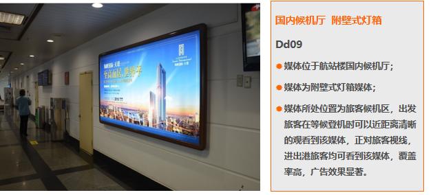 厦门机场T3国内候机厅附壁式灯箱广告(一年)Dd09