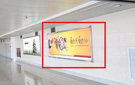 青岛机场T2到达层墙面灯箱广告(一个月)JC-Q20-T2