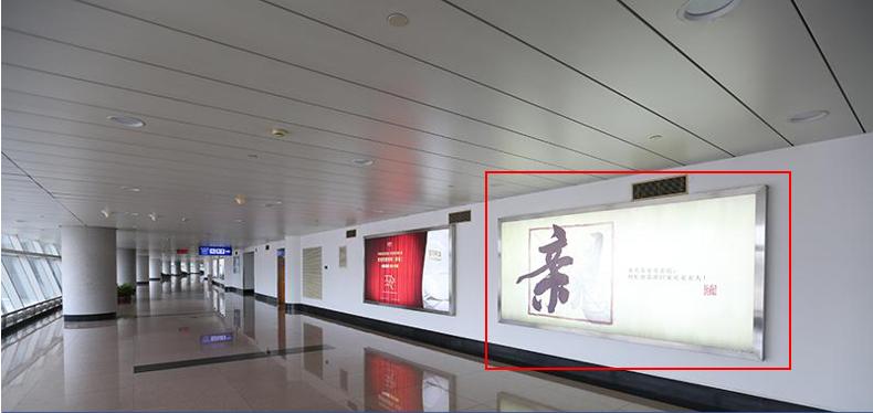青岛机场T1出发层灯箱广告(一个月)JC-Q3-T1