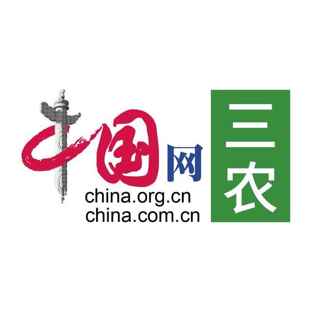 中国网三农  微头条