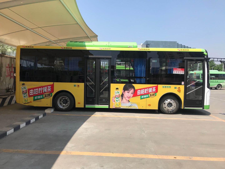 温州乐清市车身广告(月/辆)